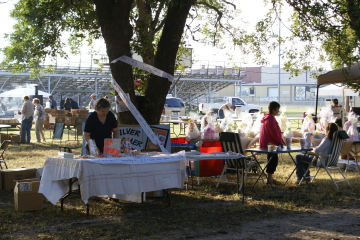 Clyde Pecan Festival, October 2008