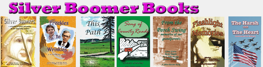 Silver Boomer Books